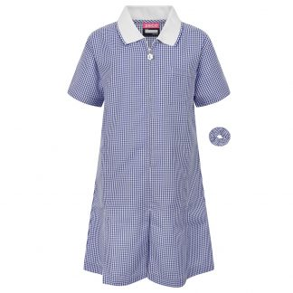 Blue Ginham Summer Dress